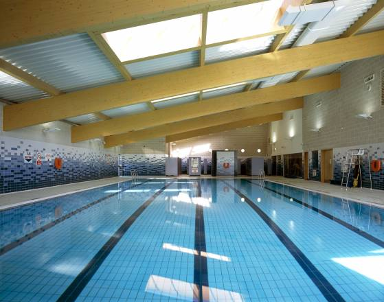 Space place - Swimming pool industry statistics ...